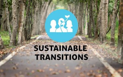 Sustainable Transitions